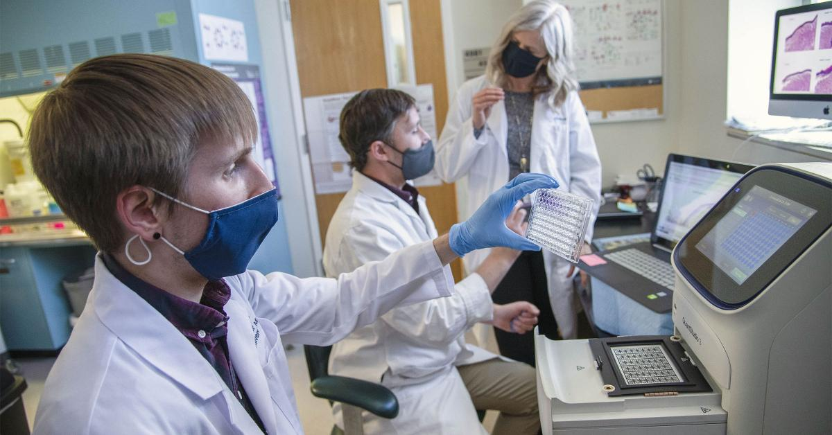 The team of third-year doctoral student Dakota Reinartz, Justin E. Wilson, PhD, and Julie E. Bauman, MD, MPH, is investigating the link between inflammation and cancer.