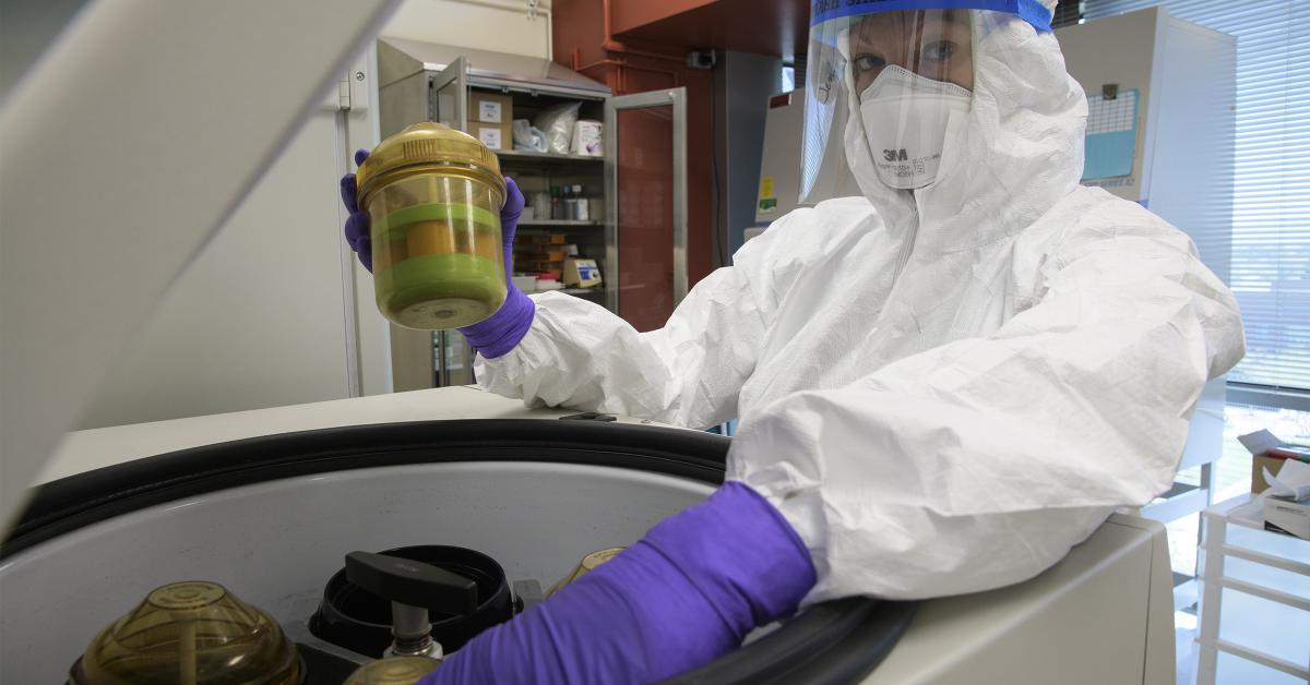 Jennifer Uhrlaub, associate research scientist and laboratory manager in the Janko Nikolich-Zugich lab, loads samples into centrifuge in the Biosafety level 3 lab in April.