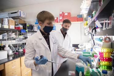 Doctoral student Dakota Reinartz and Justin E. Wilson, PhD, are on a quest to understand how inflammation plays a role in the development and spread of certain head-and-neck cancers.