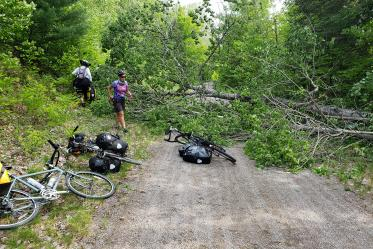 Eve Shapiro and Sally Krusing look for a good way to get people and bikes around a downed tree that blocks the bike route in Minnesota.