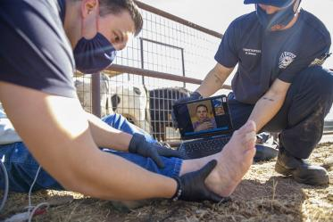 Saenz supports the patient's ankle while Dr. Gaither conducts a virtual examination of the injury. (Note: This was a simulated accident scene for demonstration purposes.)