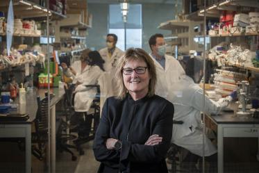 Anne E. Cress, PhD, is one of 11 founding faculty members of the UArizona Cancer Center, which has maintained an active NCI training grant, known as a T32, since 1978. The current grant is funding the ICS program.