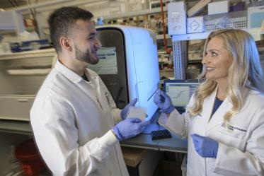 Melissa Herbst-Kralovetz, PhD, discusses research findings with Michael Khnanisho, a member of her research team at the University of Arizona College of Medicine – Phoenix and premed student at Arizona State University.