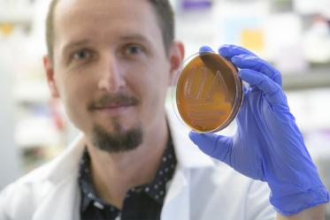 Paweł Łaniewski, PhD, department of Basic Medical Sciences for the University of Arizona College of Medicine – Phoenix, shows off his school spirit in the form of bacteria on a plate.