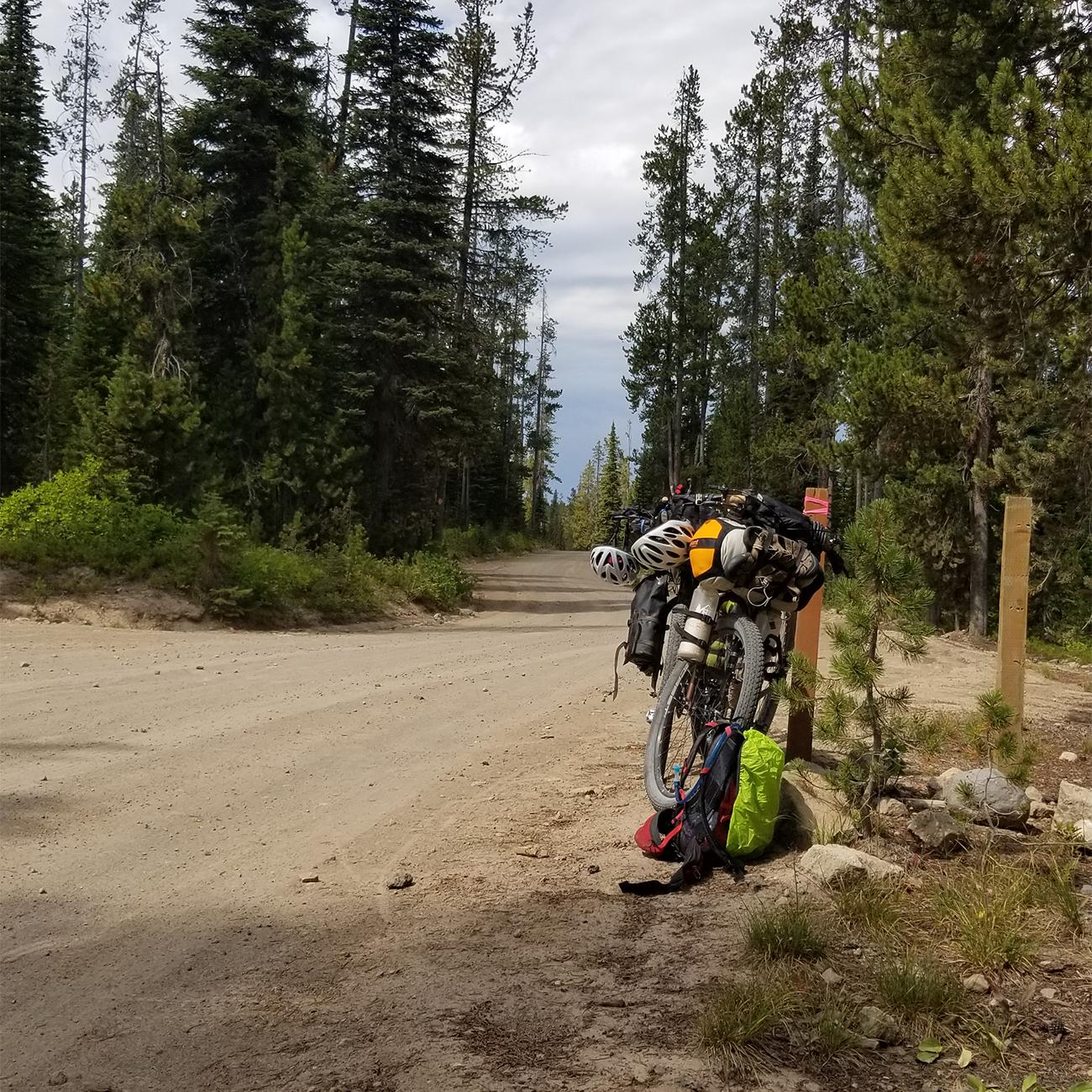 On a bike trip from Canada to Colorado, Liatti took backroads through a corner of Yellowstone National Park.