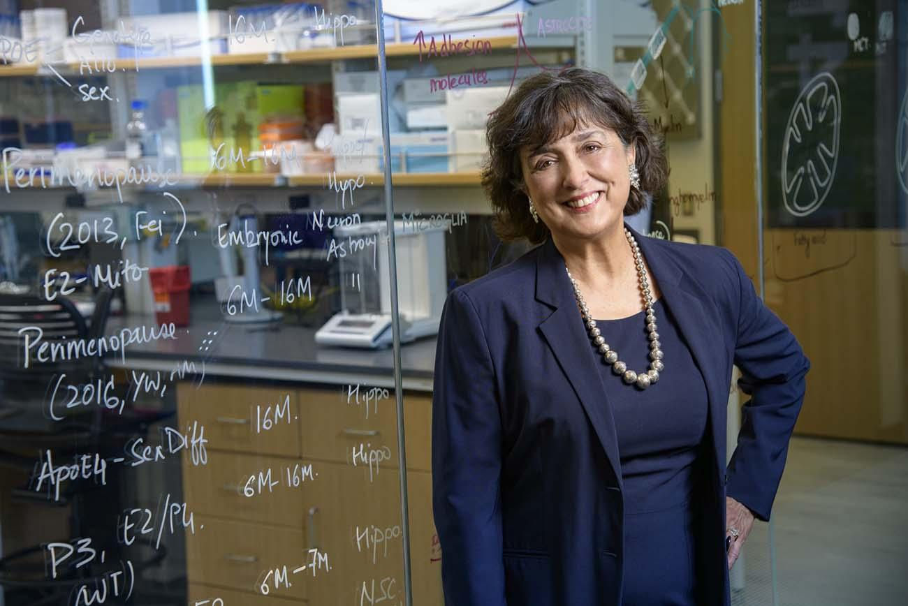 Roberta Diaz Brinton, PhD, has researched neurodegenerative diseases and the aging female brain for more than 25 years.